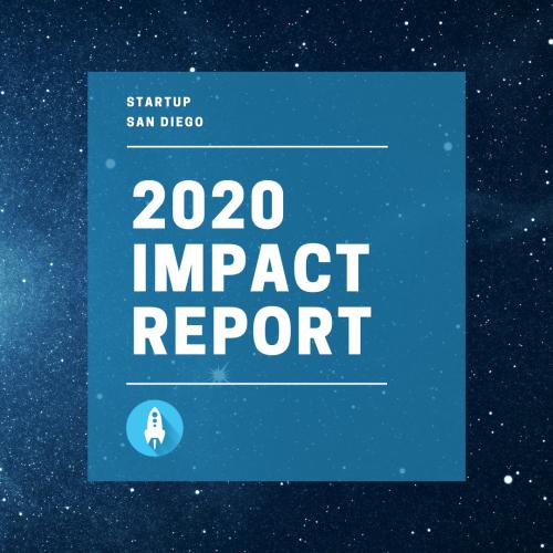 2020 Impact Report Download